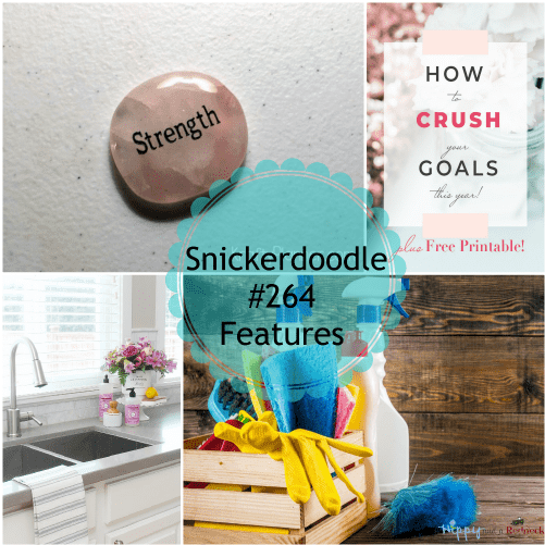 Snickerdoodle Create Bake Make Party #265