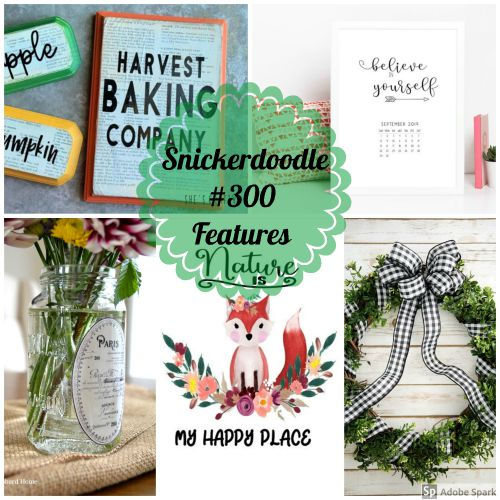 Snickerdoodle Create Bake Make Party #301